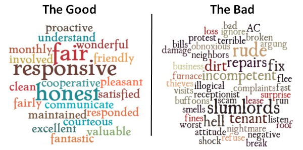 The following word clouds are comprised of actual words and  phrases from the 3,000 reviews we surveyed.